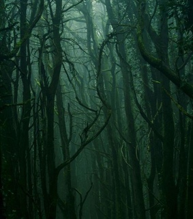 scary, green and forest