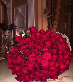 flowers, rose and luxury