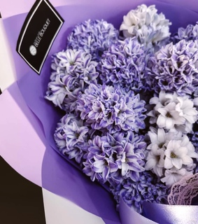 flowers, purple and lilac