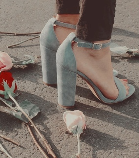 feeds, flowers and shoes