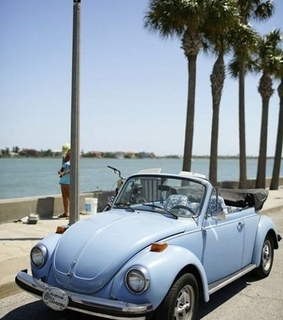 palm trees, Dream and volkswagen