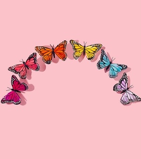 lover, butterflies and pink
