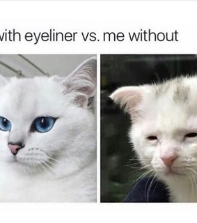 meme, makeup and funny