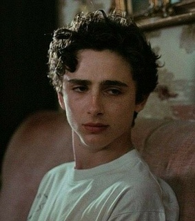 timothee chalamet, call me by your name and aesthetic
