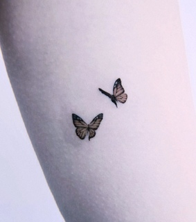 insect, post and butterfly