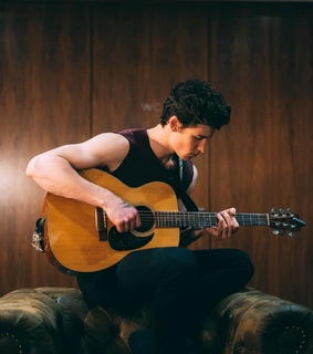 shawn, wallpaper and mendes army