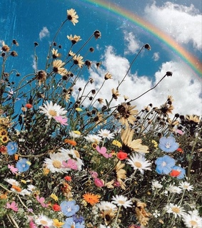 rainbow, vintage and flowers