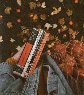 leaves, books and fall