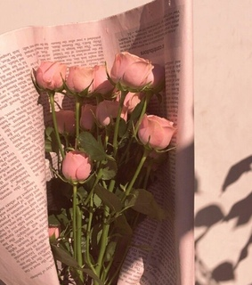 bouquet, newspaper and bunch