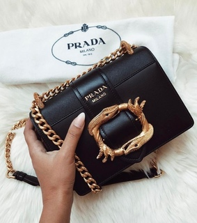 beauty, bag and fashion