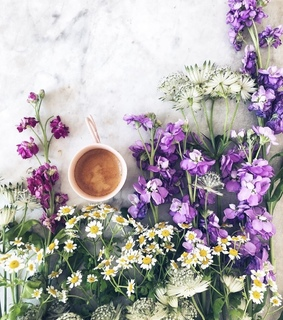 flowers, cup of coffee and coffee time