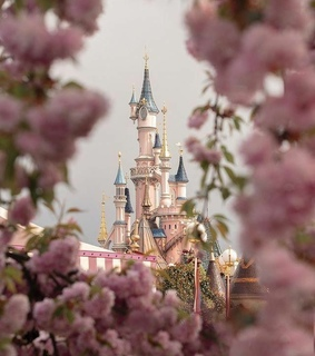 princess, castle and aesthetic