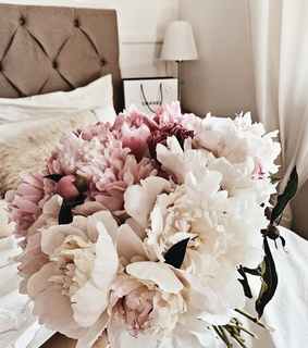 flowers, pretty and home