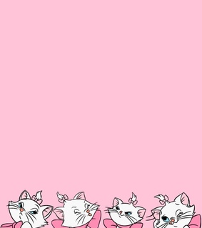pink, design and cats