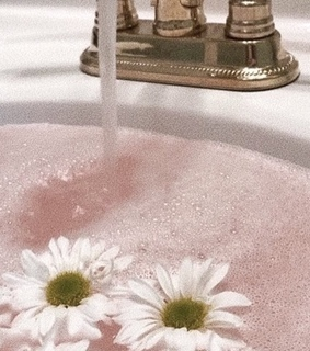 water, flowers and sink