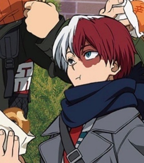 todoroki, bnha and my hero academia