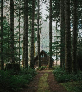 nature, vintage and cozy
