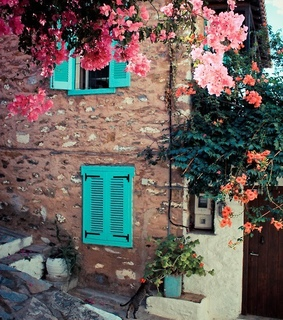 doors and windows, nature and photography
