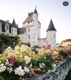 nature, medieval and sunshine