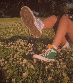 flowers, legs and field