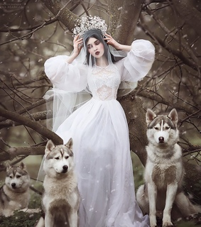dress, forest and tiara