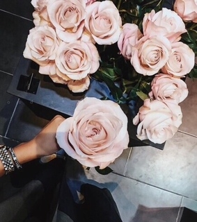 flowers, tumblr and inspiration