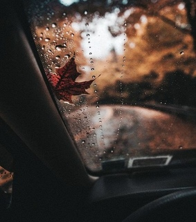 traveling, autumn and fall