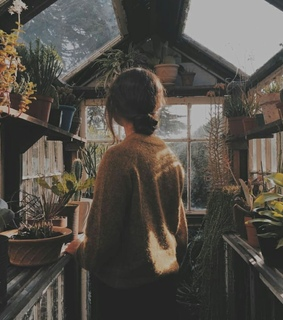 plant, sweater and girl