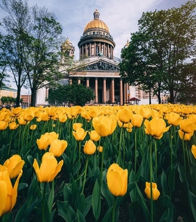 st. petersburg, travel and architecture