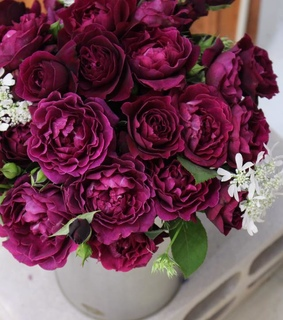 bouquet, beautiful and rose bouquet