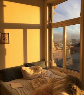 aesthetic, golden hour and home