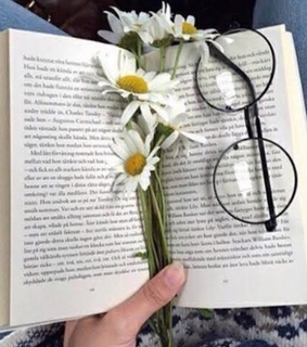 glasses, livros and indie