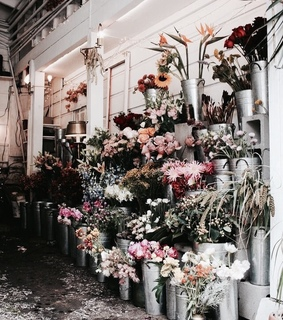 aesthetic, shop and flowers