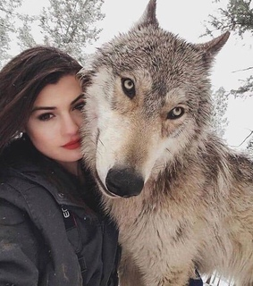 wolfdog, love and women