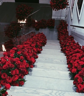 roses, red and stairs