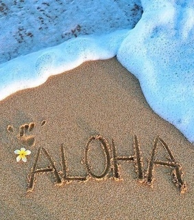 fun, young and Aloha
