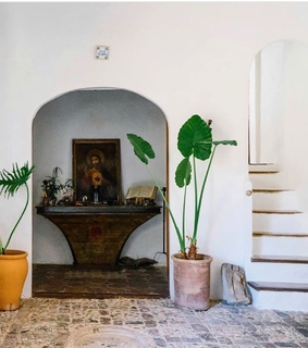 stairs, mediterranean and plants