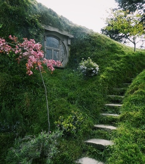green, nature and cottage