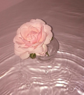 water, romantic and bath