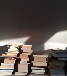 bibliophile, vintage and sunlight