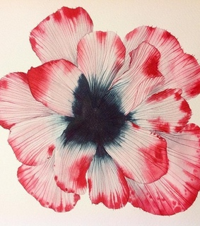 watercolor, photography and art