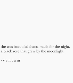black rose, gorgeous and night
