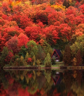 colorful, autumn and mountains