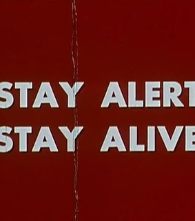 quote, stay alert and alive