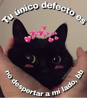 memes en español, kawaii and aesthetic