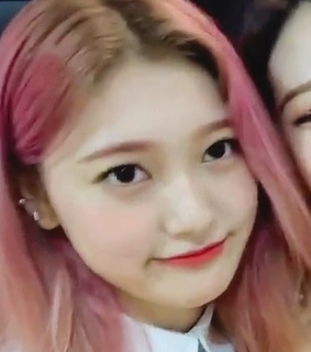 lq, icon and choerry