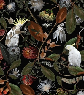 cockatiels, pattern and jungle