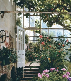 garden, greenery and greenhouse
