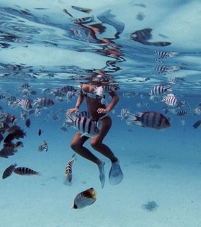 snorkelling, ocean and outdoors
