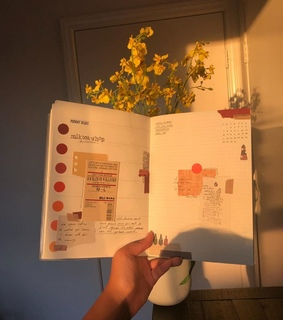 soft, diary and colorful